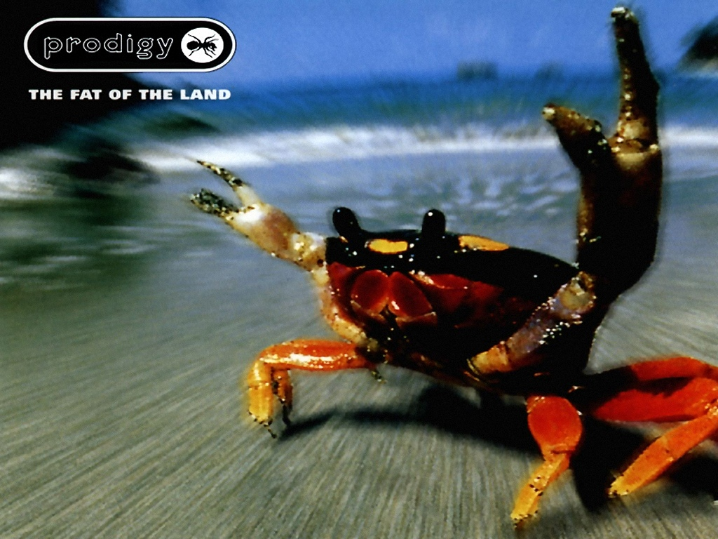 The Prodigy Wallpapers The Prodigy Wallpapers 2jpg 1024x768