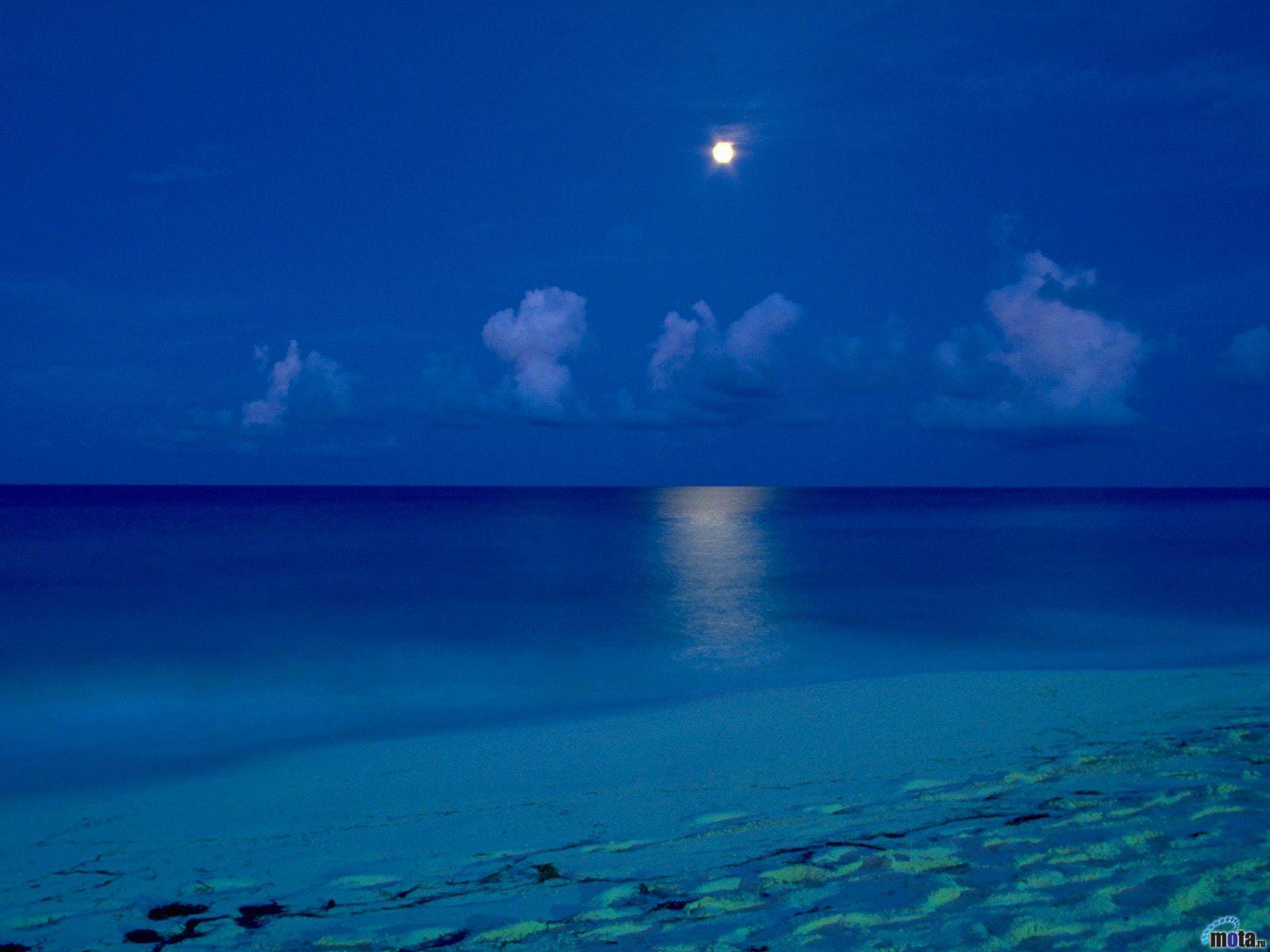 Beach At Night Wallpapers Download Wallpapercraft 1600x1200
