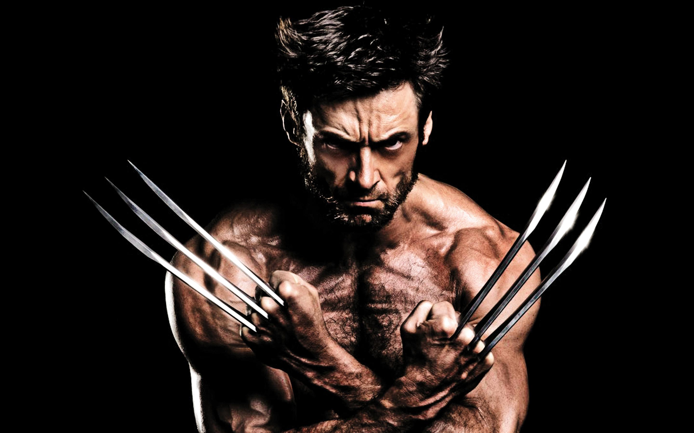 Wallpapers Of Wolverine Wallpapersafari