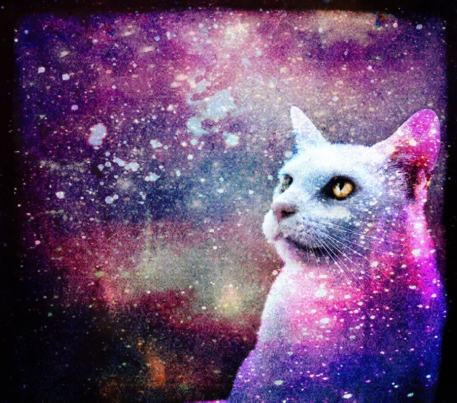 Cat Art Tumblr Wallpaper Galaxy By Skinagainstface 900x795