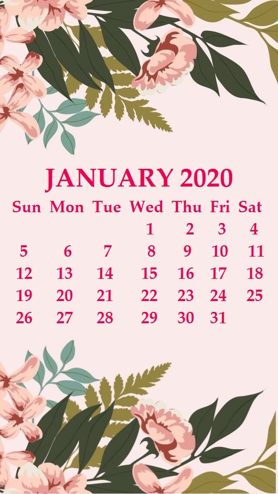 iPhone January 2020 Calendar Wallpaper january january2020 564x1001