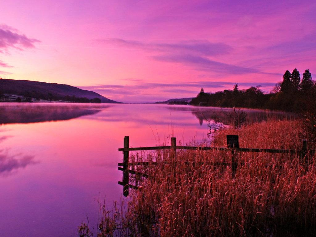 Pink Sky Pink Water Pink Sunset WallpapersPicturesHDDestop 1024x768