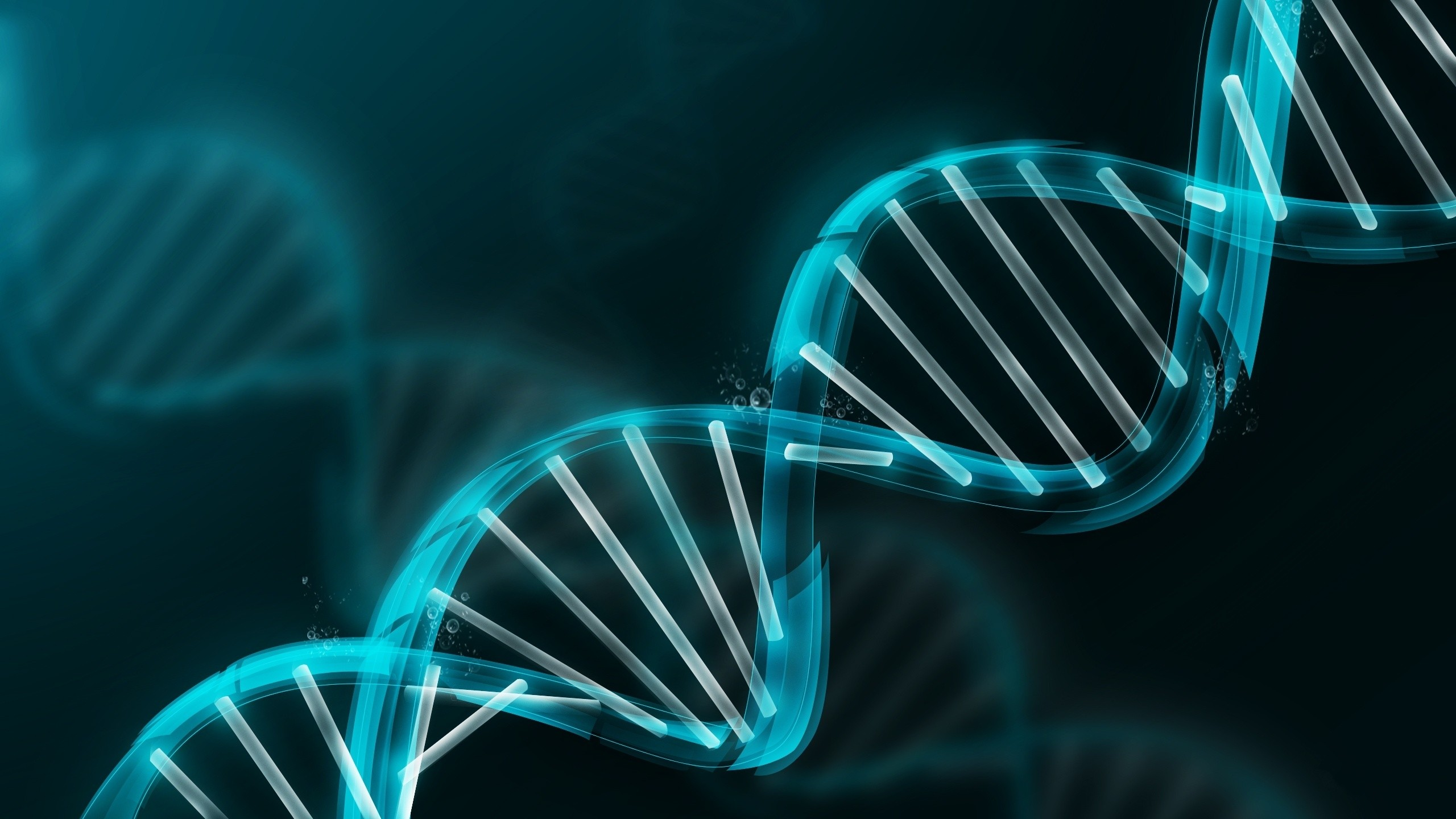 abstract molecule DNA DNA double helix Wallpapers 2560x1440