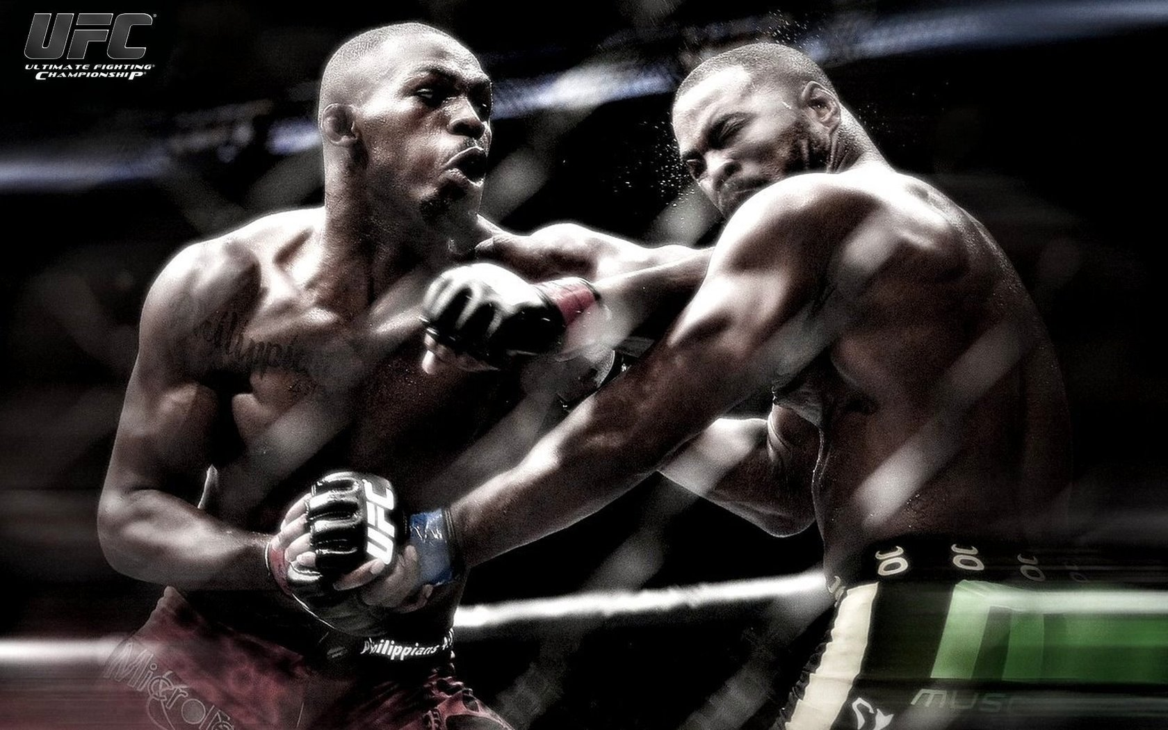 UFC Fighting Wallpapers HD 2014 1680x1050
