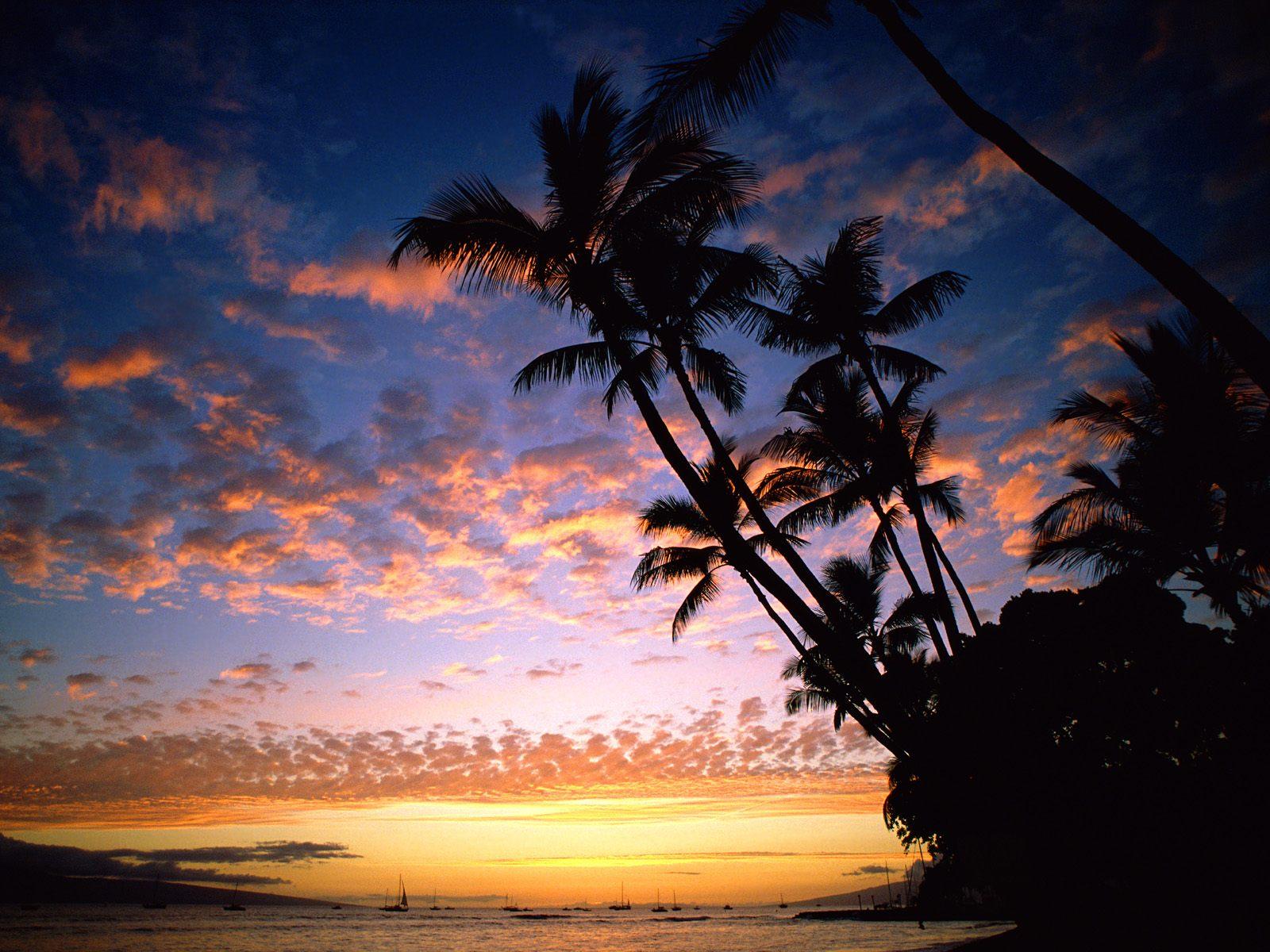Hawaii Beach Sunset Wallpaper 1600x1200