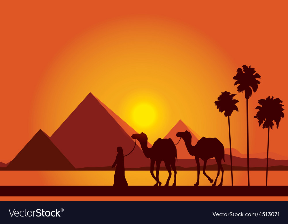 Egypt Great Pyramids on sunset background Vector Image 1000x780