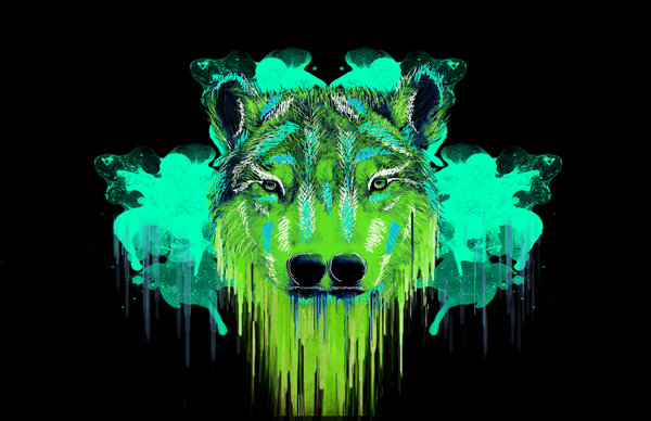 Psychedelic Wolf Wallpaper Psychedelic psy wolf by 600x388