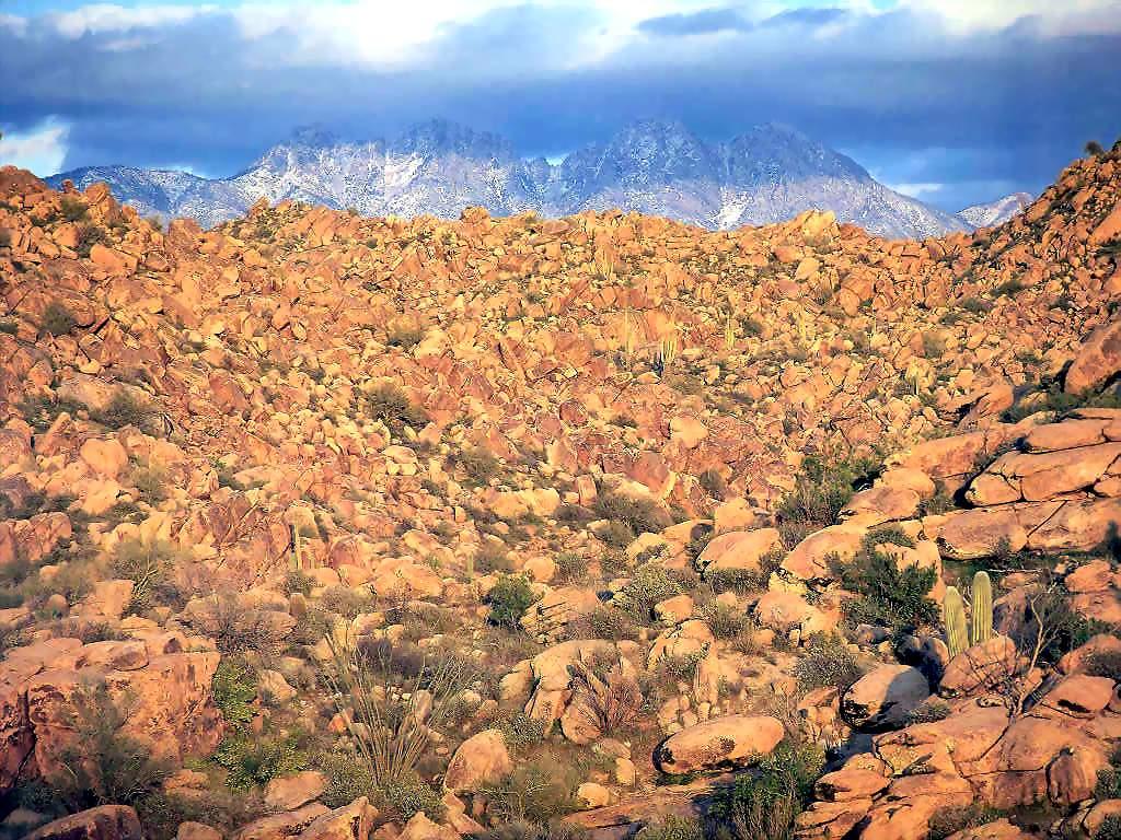arizona nature picture arizona foto arizona nature arizona nature 1024x768