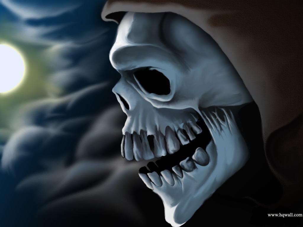 Download 15 Skull Wallpaper HD Wallpapers   Part 4 1024x768