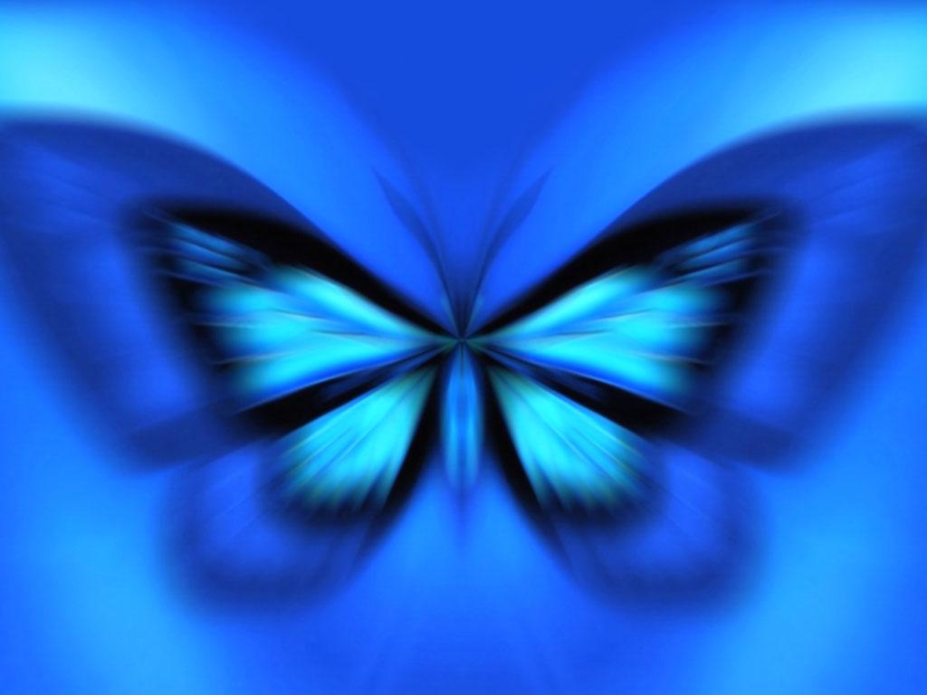 49+ Blue Butterfly Wallpaper Background on WallpaperSafari