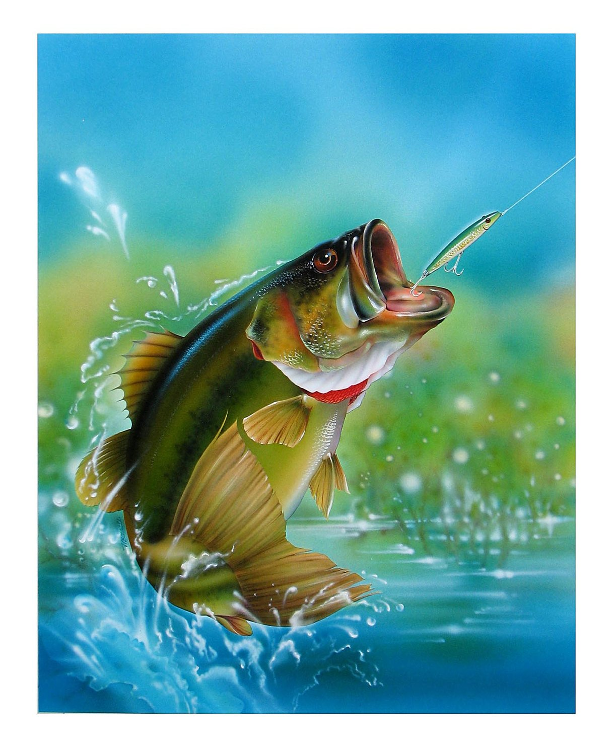 Largemouth Bass Paintings Airbrush illustration painted 1217x1500