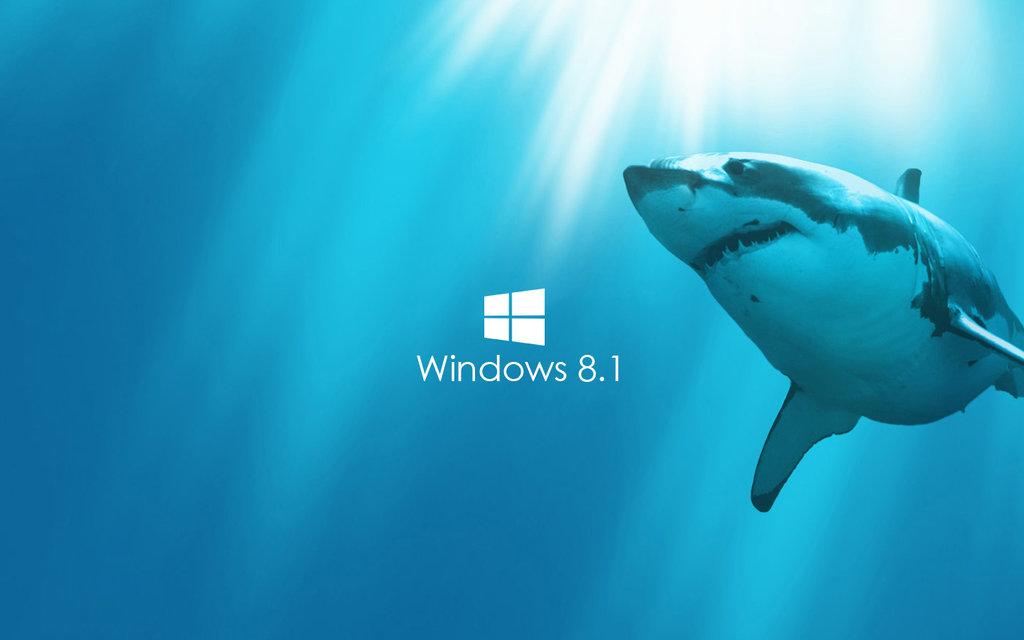 Shark Live Wallpaper Windows 8