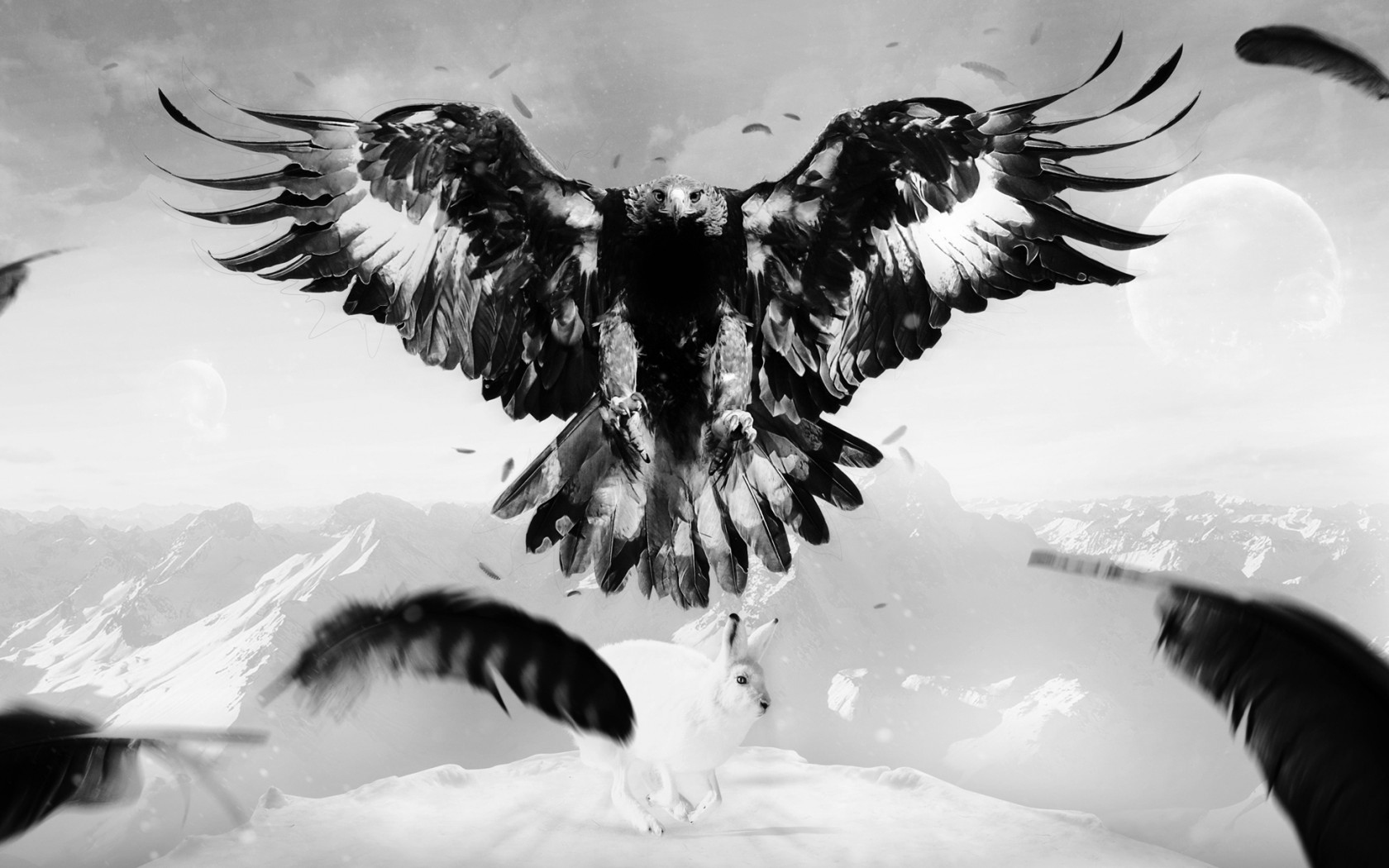 Eagle Hare Art Bird Feathers Mountains   Stock Photos Images 1680x1050
