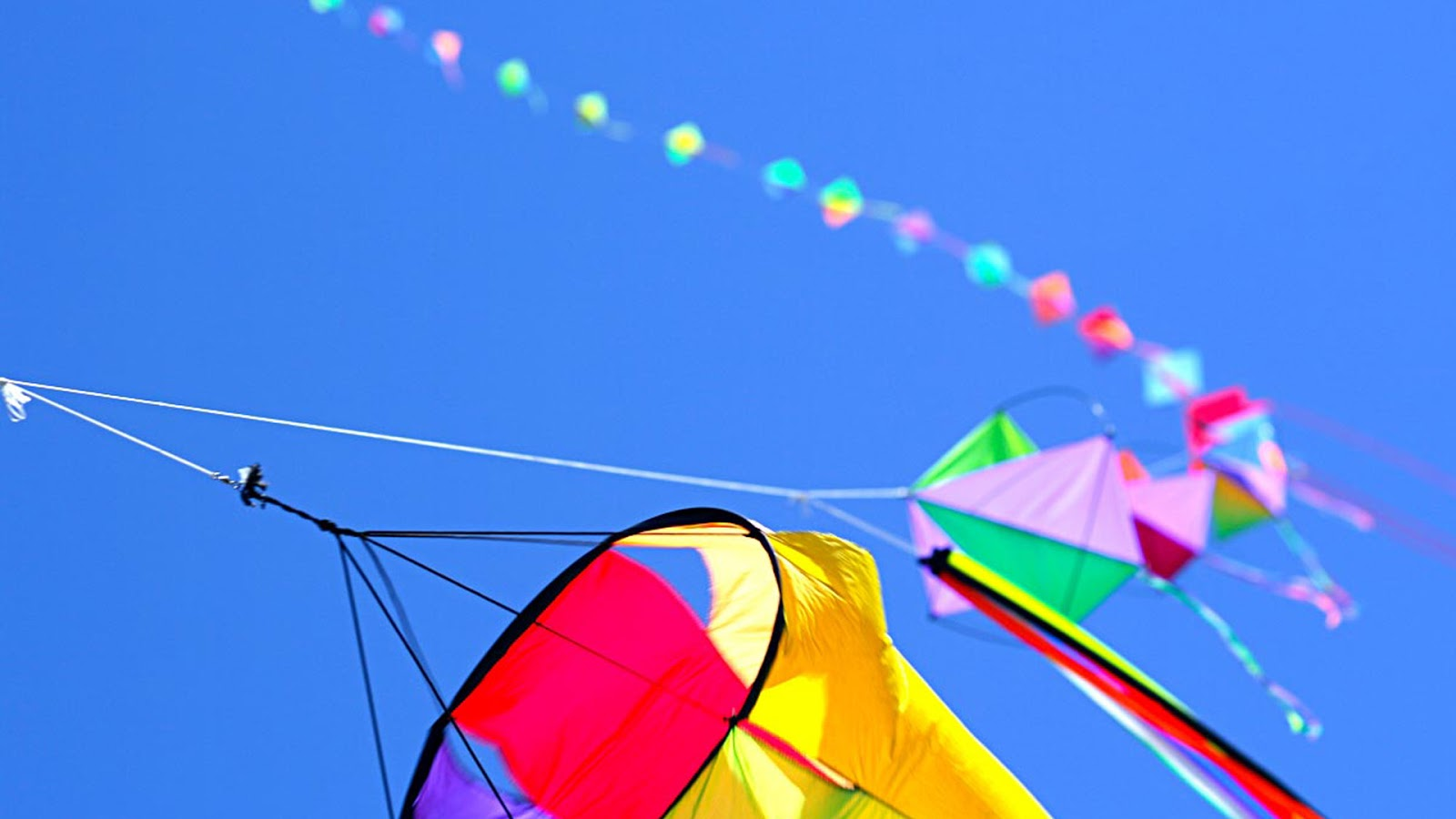 Kites HD wallpapers   pic 19   SA Wallpapers 1600x900