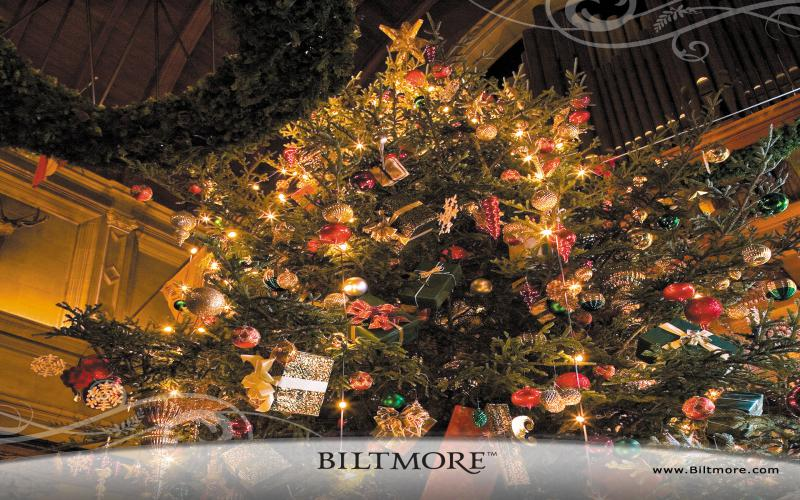 HD Biltmore House Christmas Tree Wallpaper Download   116871 800x500