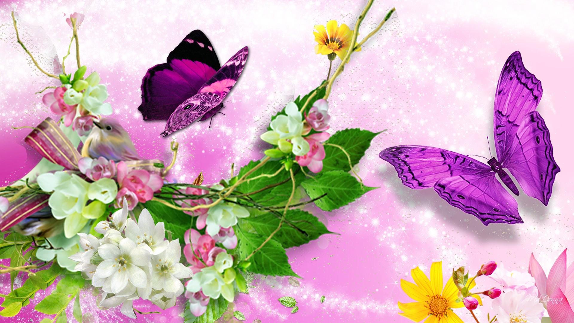 brillante mariposas brillantes BL wallpaper   ForWallpapercom 1920x1080