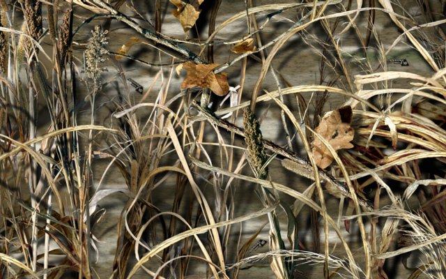 max 4 wallpaper 2015   Grasscloth Wallpaper 640x400