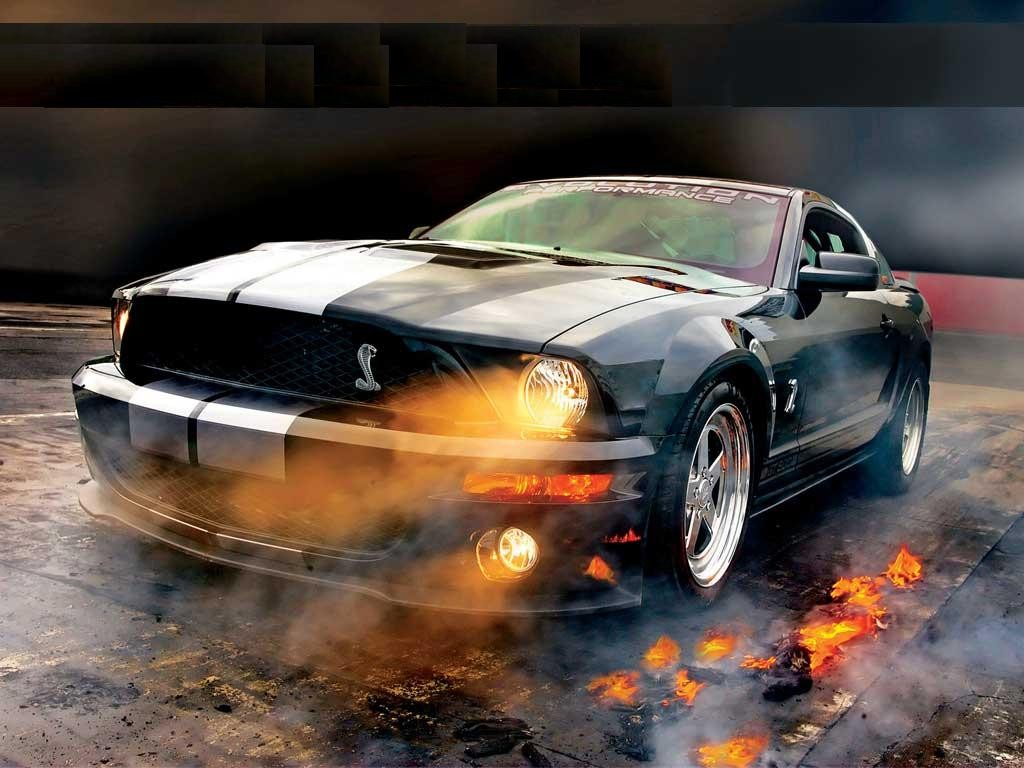 CARS PROJECT All Mustang Cobra Cars Project Pictures and Wallpapers 1024x768