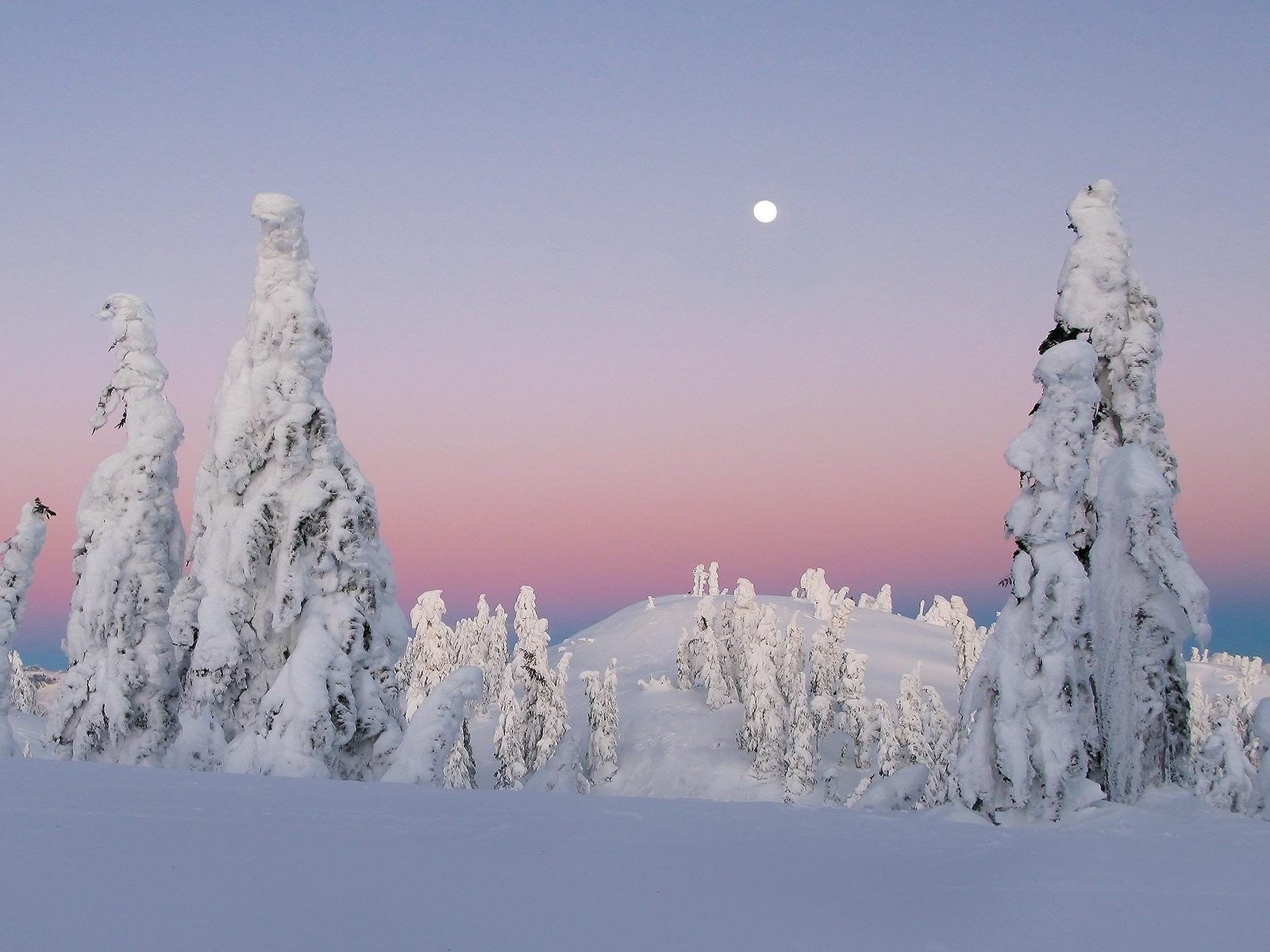 10 winter landscapes Cute wallpapers 1600x1200