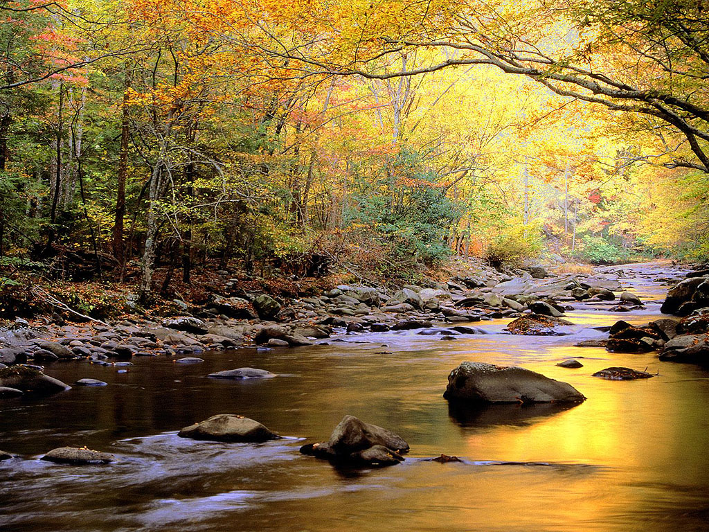 Very Nice Mountain River Wallpaper Wallpaper Pictures 1024x768