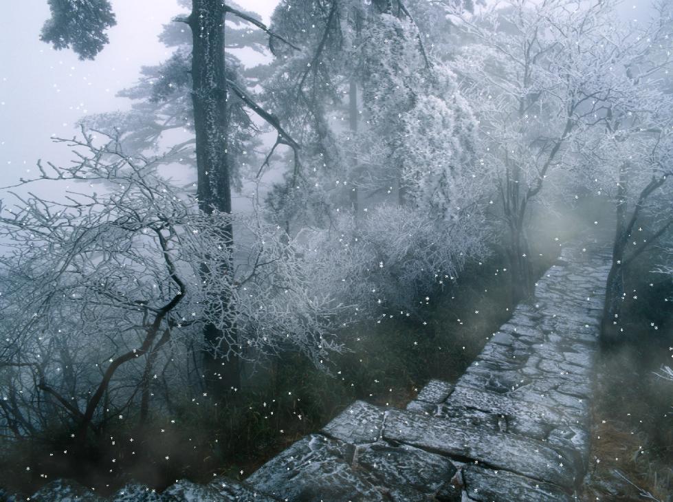 Rain And Snow Animated Wallpaper   Animated WallPaper 979x730