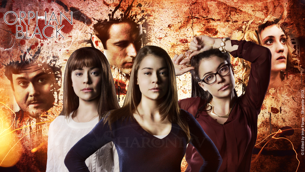 Cool Wallpapers 29 Beautiful Orphan Black Backgrounds 1024x576