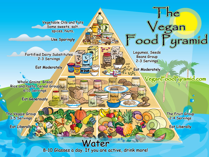 Wallpaper Download The Vegan Food Pyramid Desktop Wallpaper 670x503