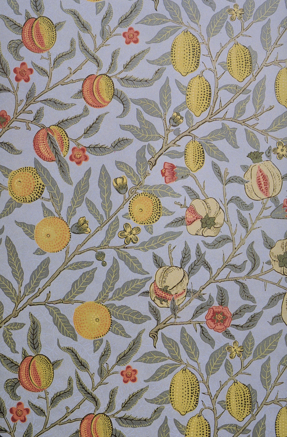 Vintage Ephemera Fruit or Pomegranate wallpaper designed by William 971x1476