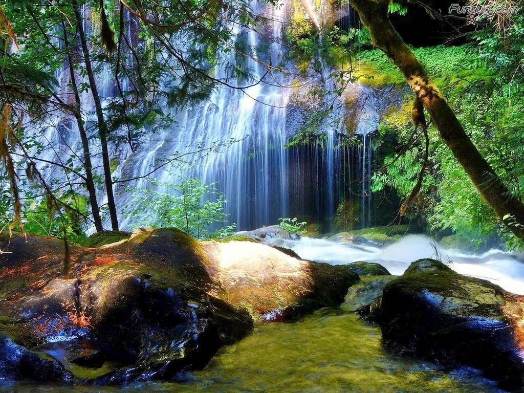 Nice Nature Wallpaper