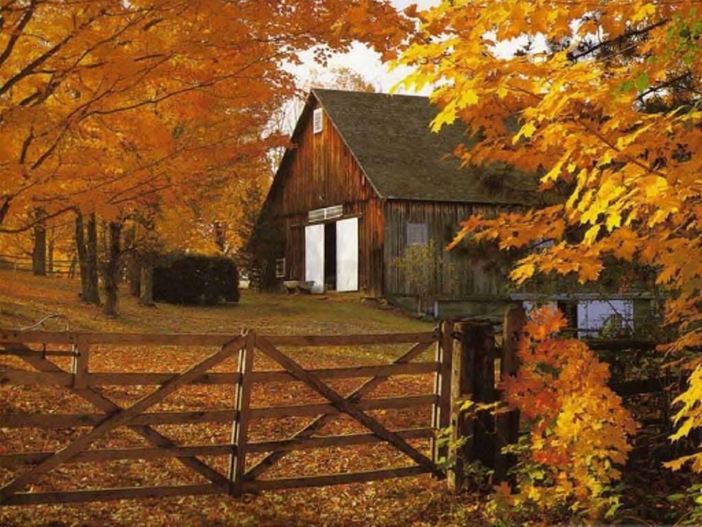 Barn During Fall wallpaper 1024x768