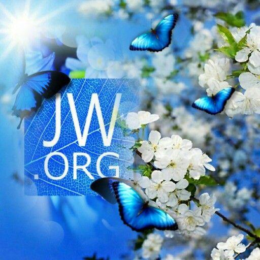 jw org wallpaper   wallpapersafari