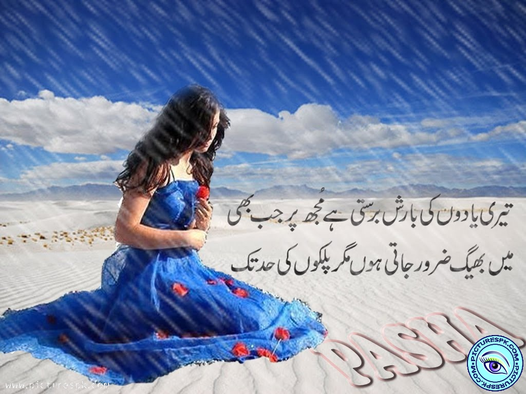 download in urdu for facebook for desktop in english wasi shah 1024x768