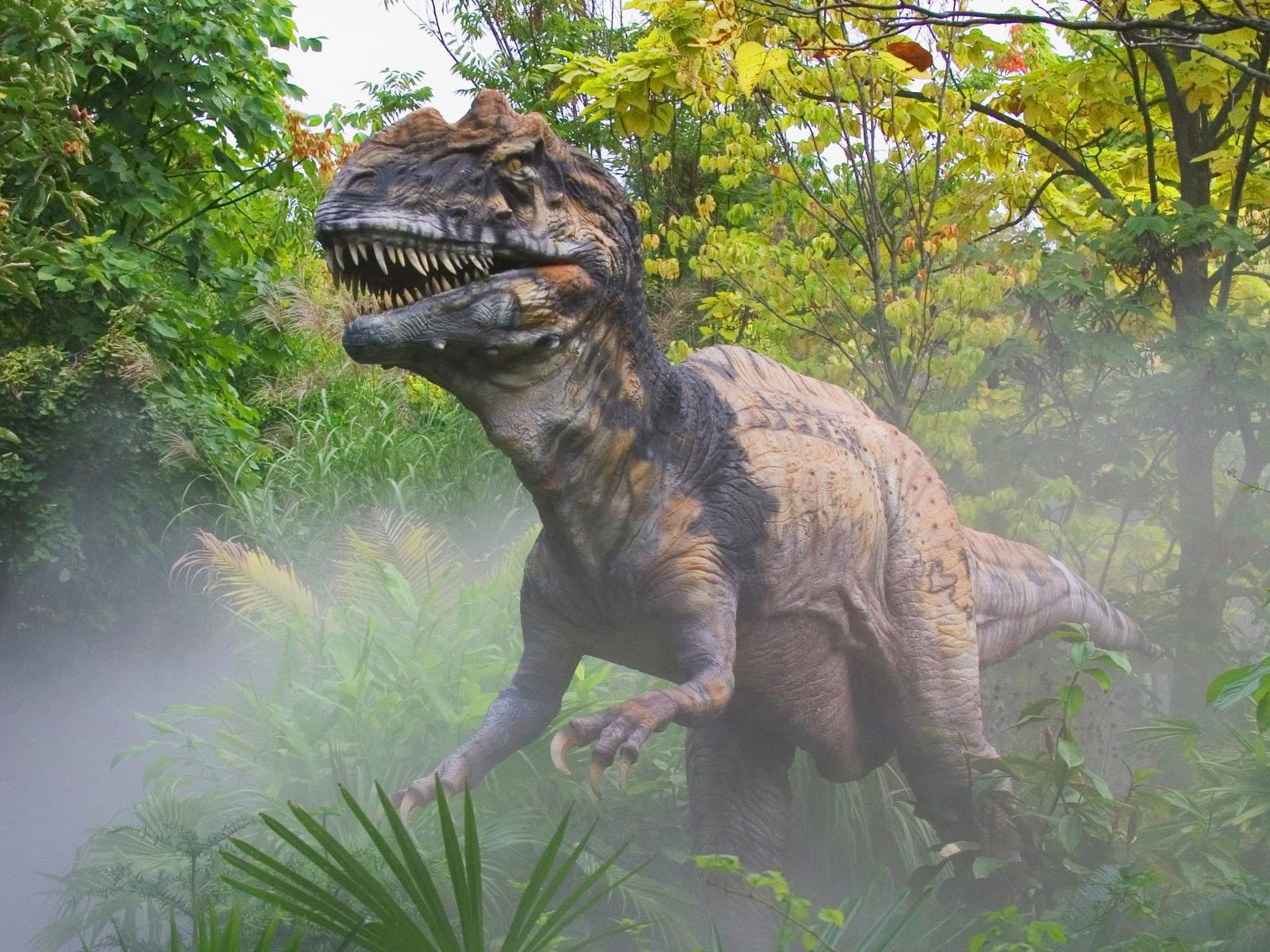 Poze cu dinozauri 3d cool dinosaur wallpaper Wallpapereorg 1600x1200