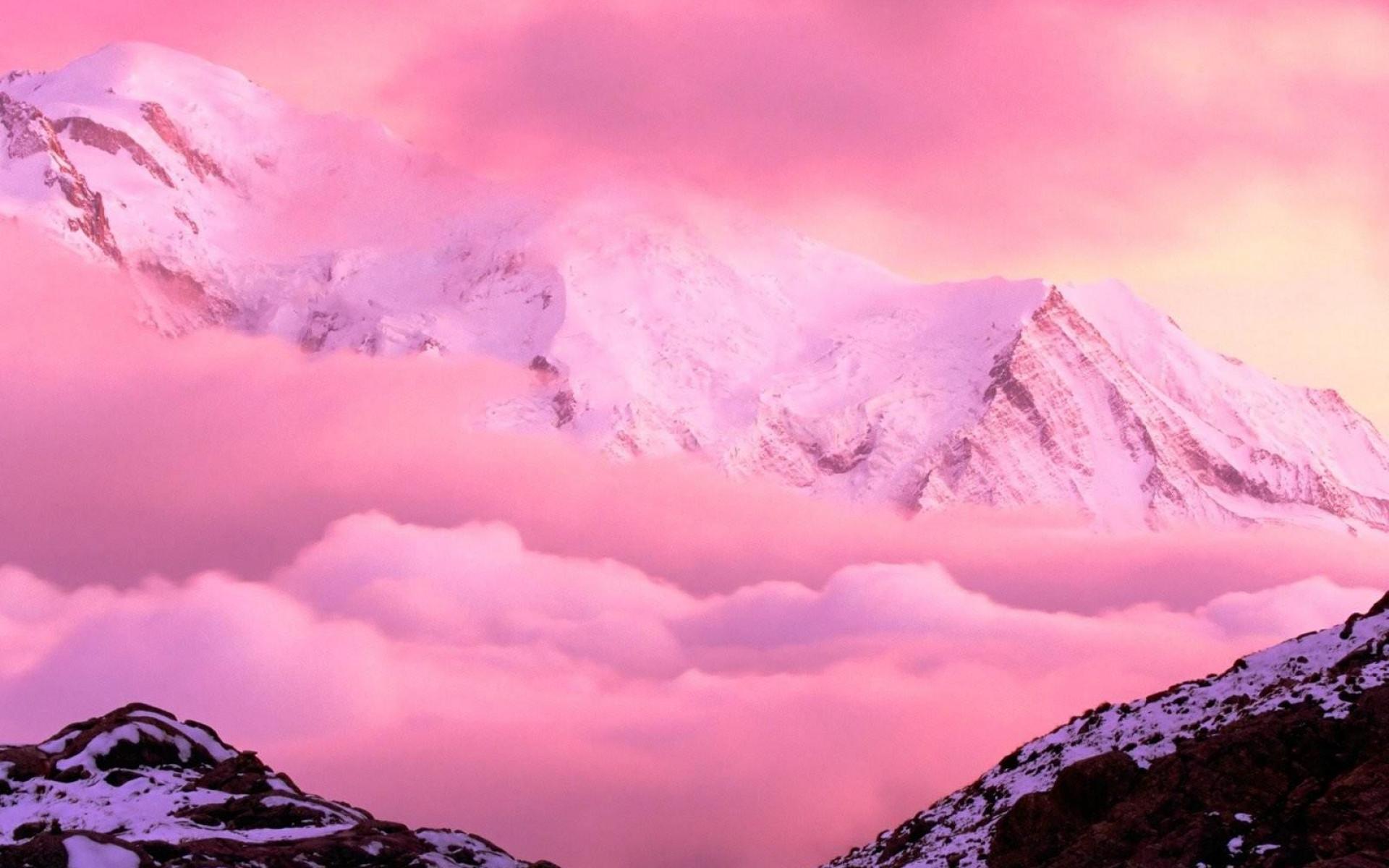 Pink 1900x1200   Wallpaper High Definition High Quality Widescreen 1920x1200