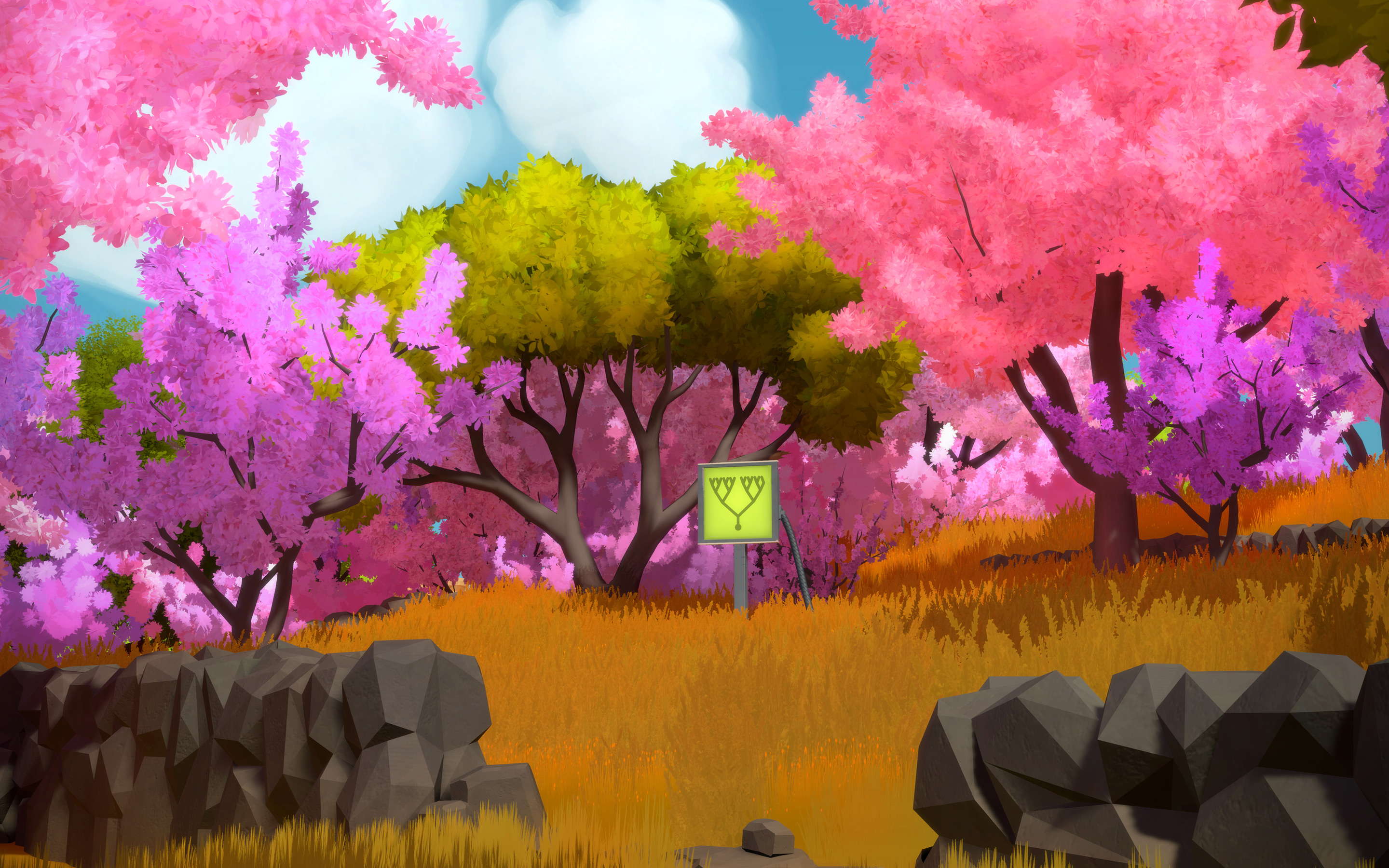 The Witness Game Wallpaper 44762 2880x1800px 2880x1800