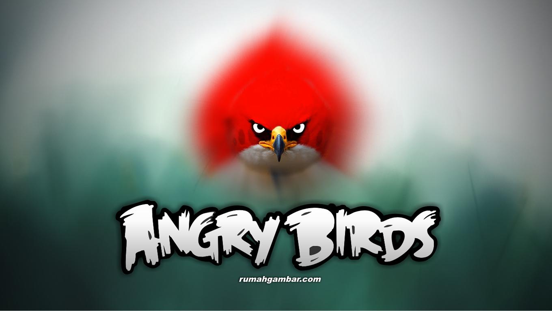 angry birds wallpapers angry birds wallpapers angry birds wallpapers 1360x768