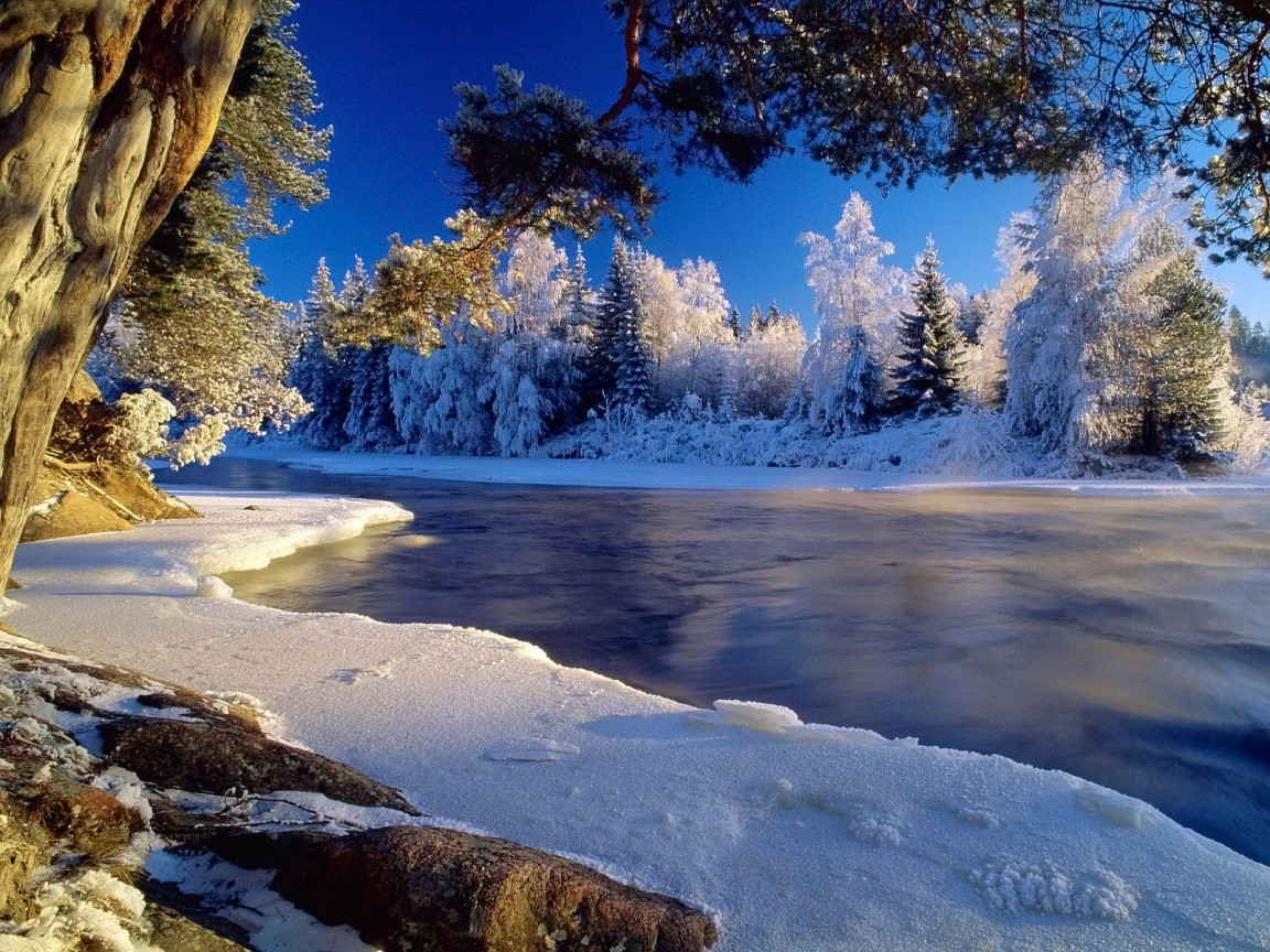 Nature desktop backgrounds Get computer wallpapers of Winter 1152x864