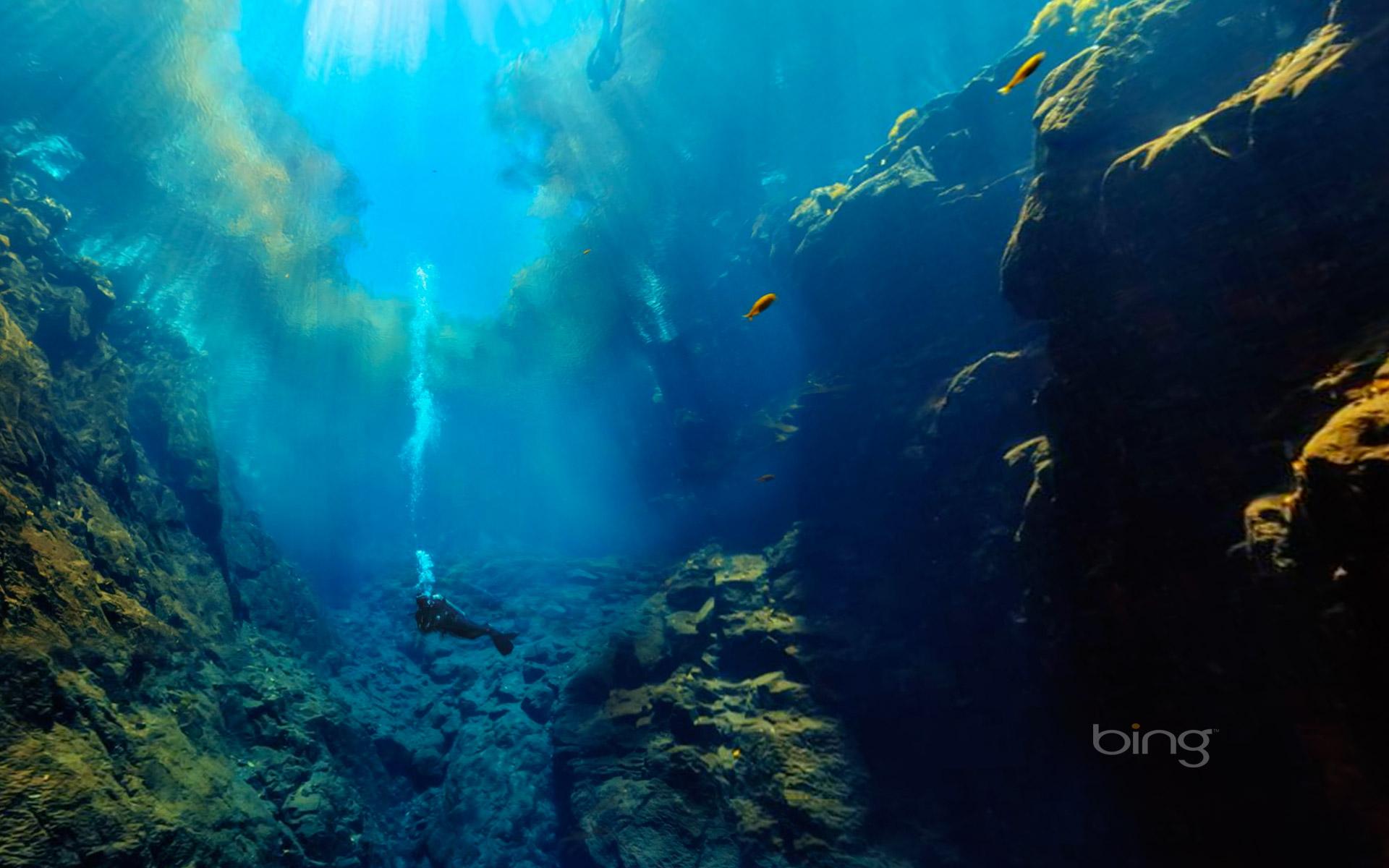 Underwater view of Lagoa Misteriosa Mysterious Lagoon in Jardim 1920x1200