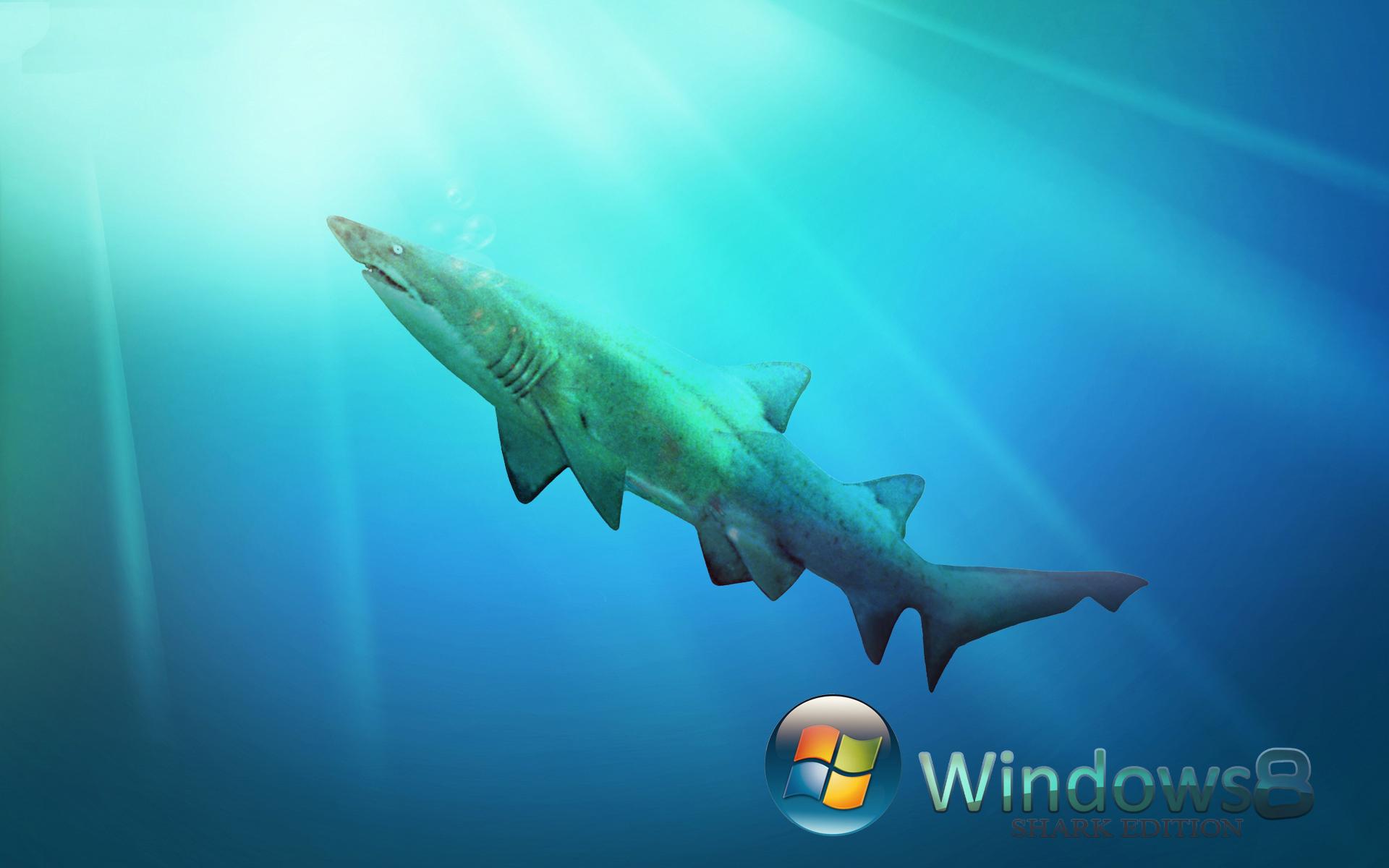 windows 8 official desktop wallpapers windows 8 black and blue desktop 1920x1200