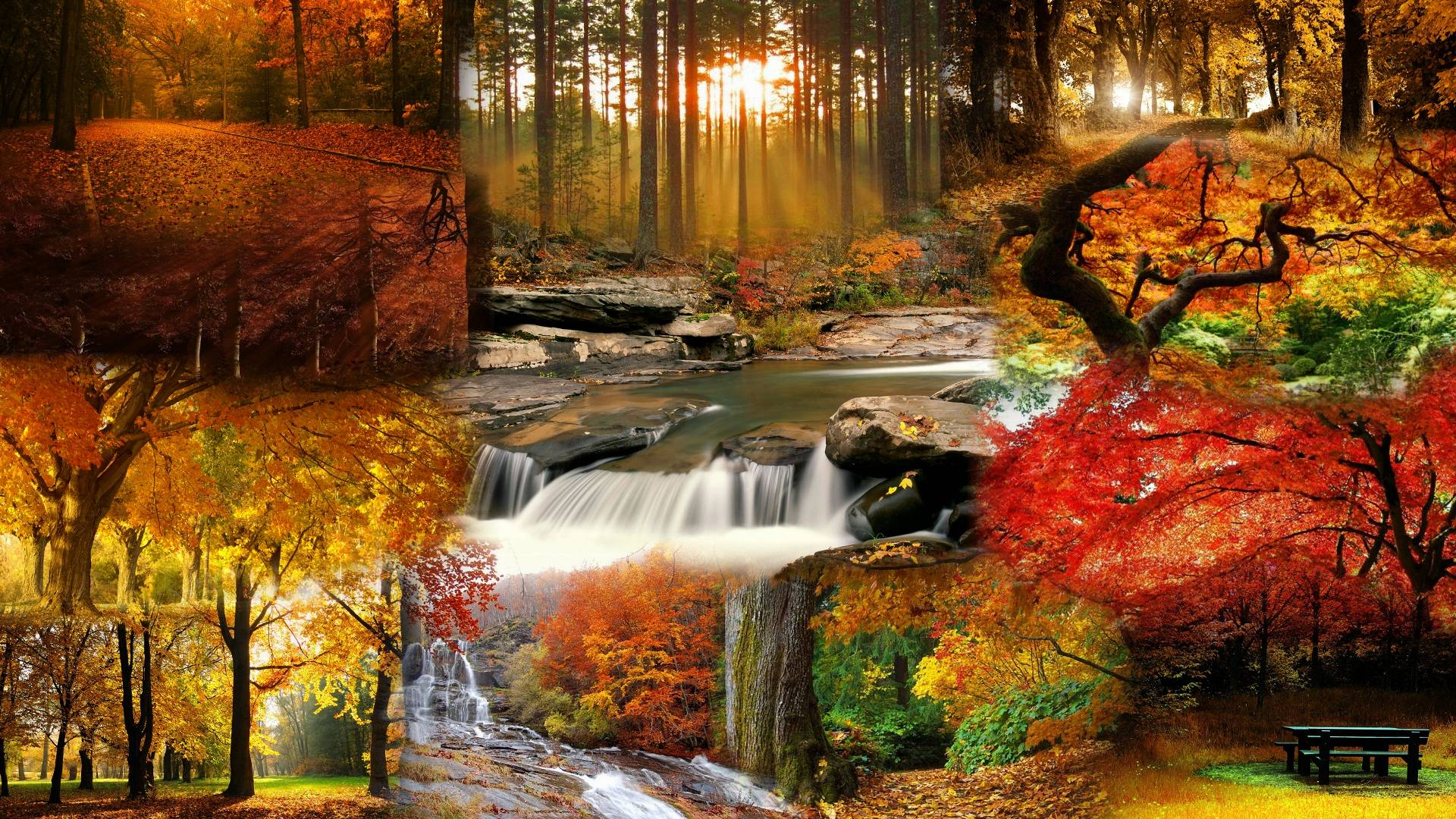 fall landscape computer wallpaper