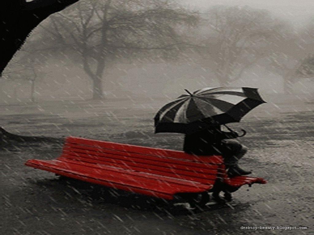 For your Desktop Rain Pictures Rain Wallpapers 1024x768