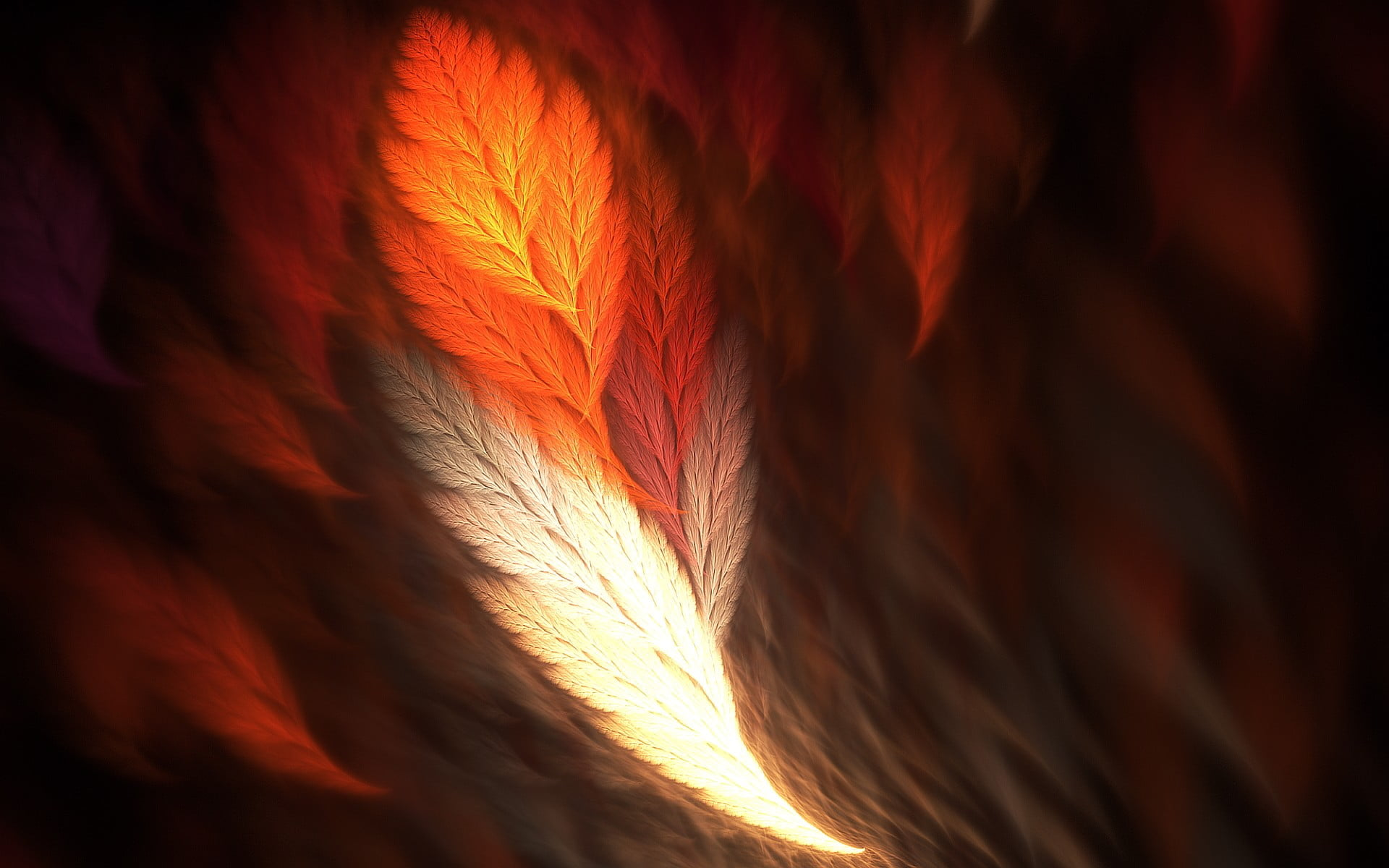 White and orange feather abstract feathers fractal HD wallpaper 1920x1200