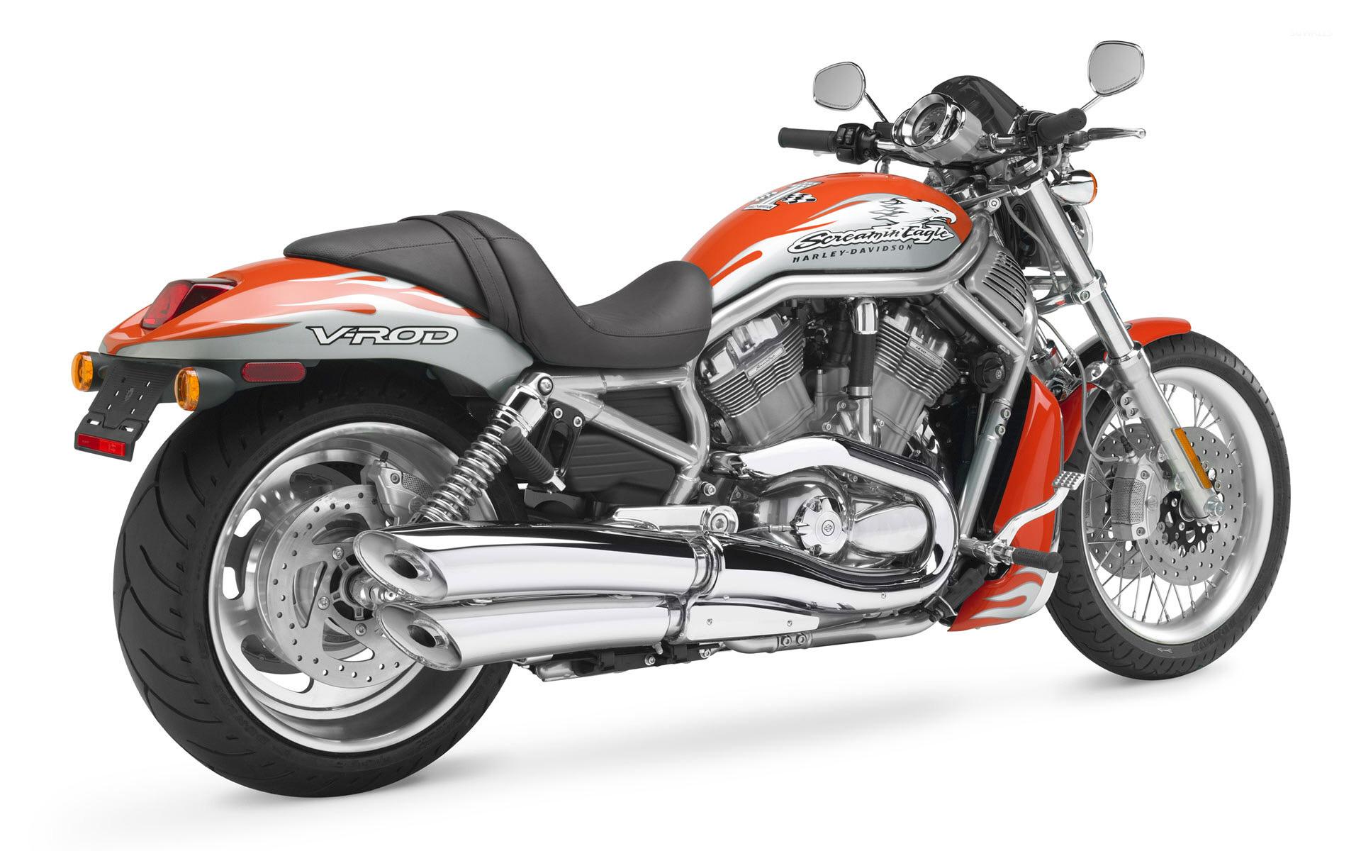 Davidson VRSCF V Rod Muscle wallpaper   Motorcycle wallpapers   9731 1280x800