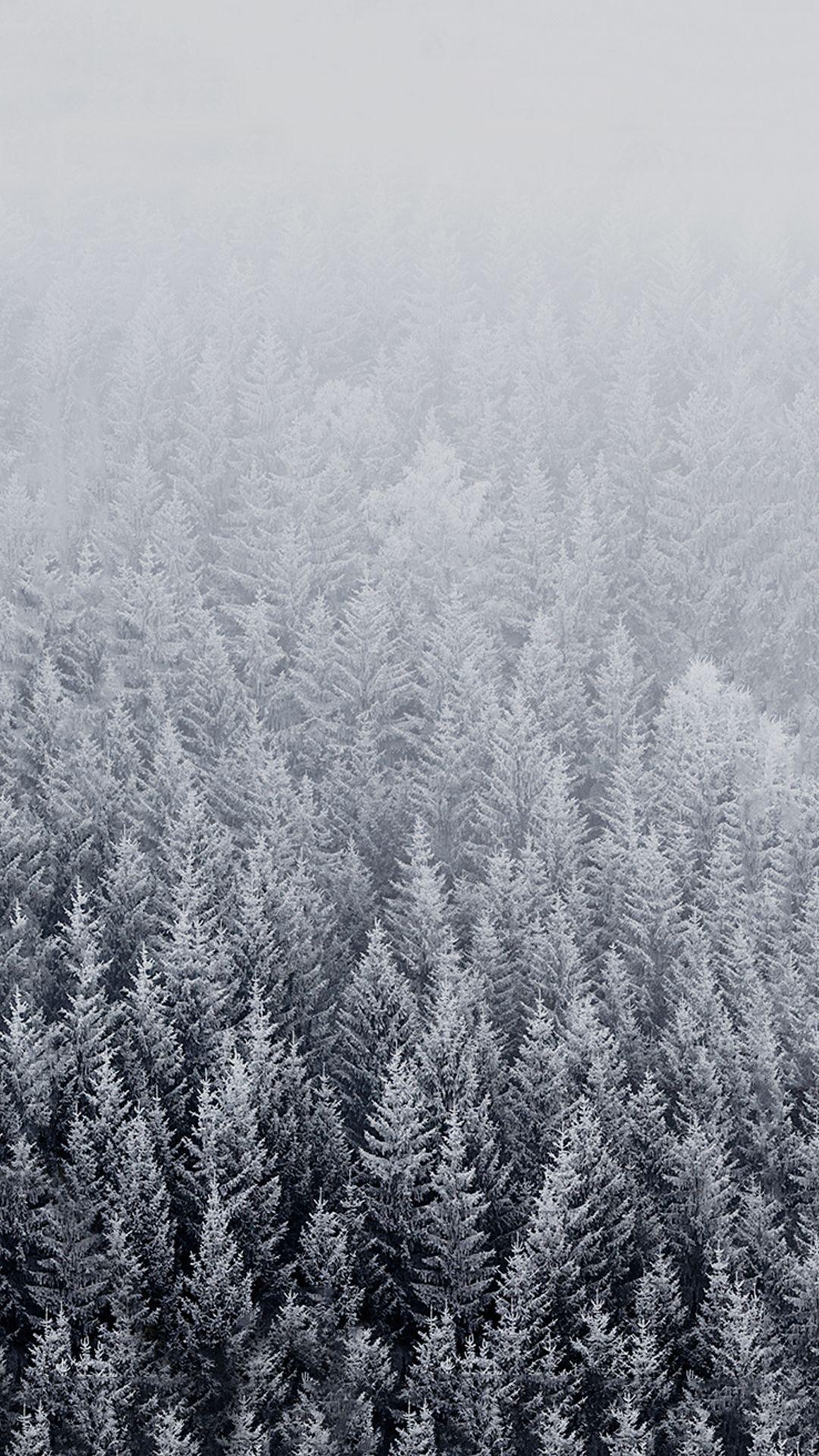 HD Winter Background for Iphone Azrak in 2019 Pinterest 1080x1920