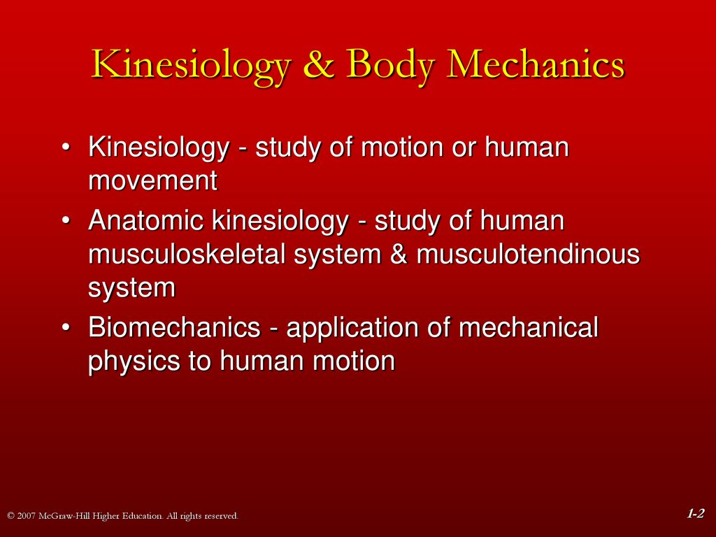 Chapter 1 Foundations of Structural Kinesiology   ppt download 1024x768