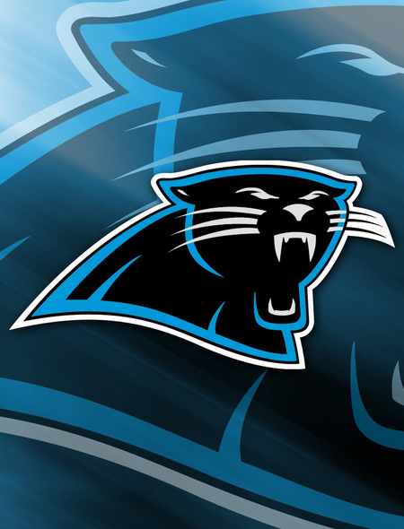 Carolina Panthers Wallpaper for Dell Latitude 10 450x590