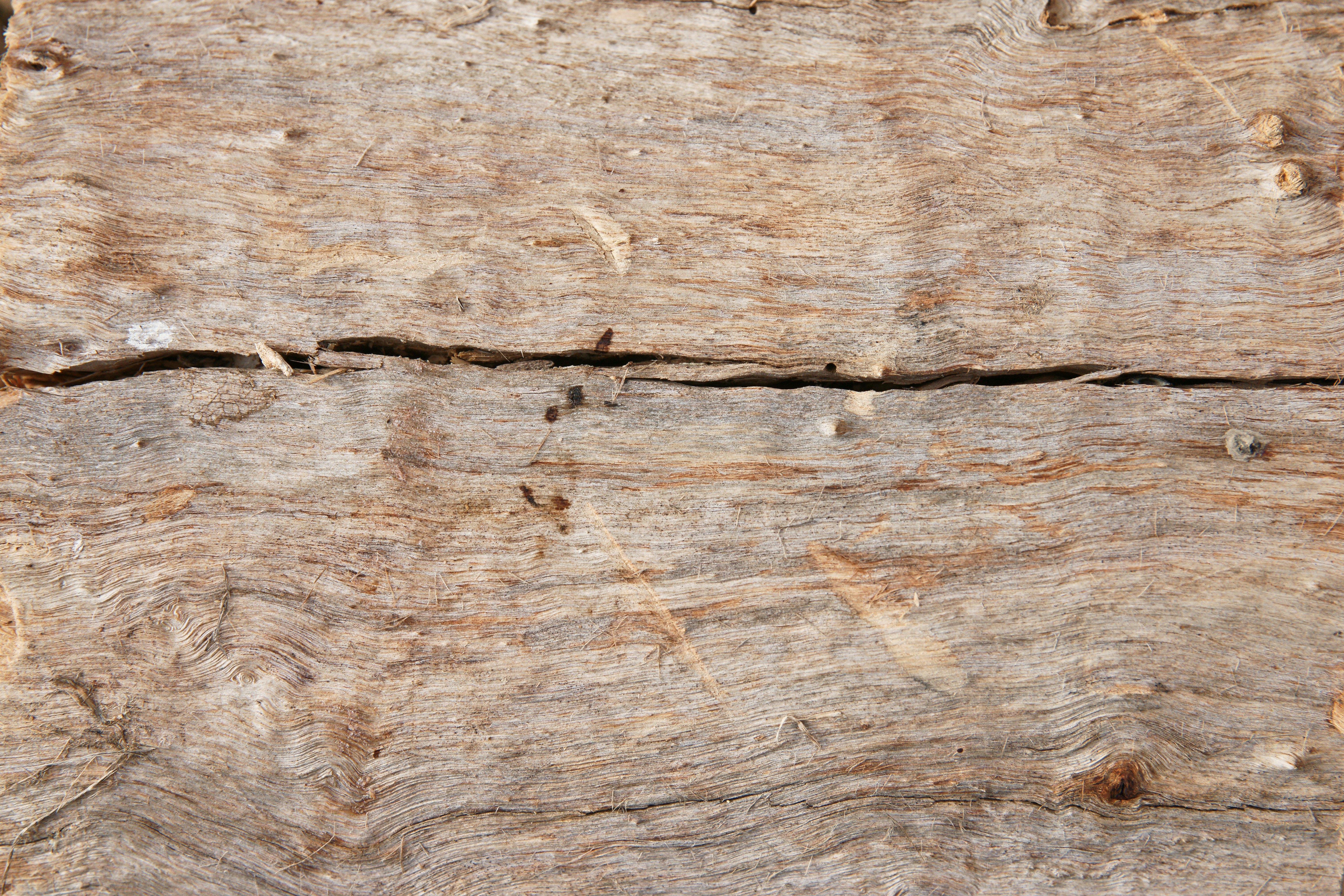 Log wallpaper with the texture of logs wallpapersafari
