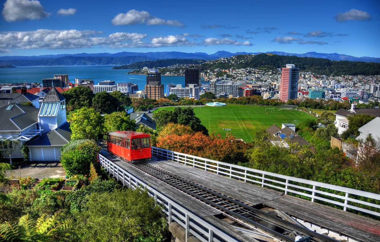 Wallpaper forest mountains the city home New Zealand panorama 1332x850