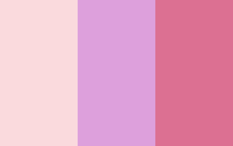 pale pink pale plum pale red violet three color backgroundjpg 2880x1800