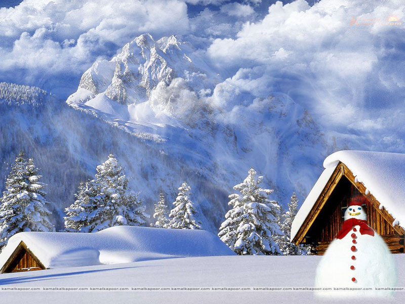 DeskDeco Wallpaper Downloads Four Seasons Wallpaper 800x600
